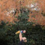 Portrait de bébé en automne - séance photo professionnelle