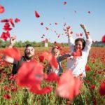 Séance photo famille dans un champ de coquelicots. Envolée de fleur de coquelicots.