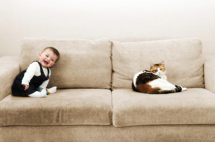Portfolio bébé naissance Marseille. Portrait rigolo de bébé et son chat.