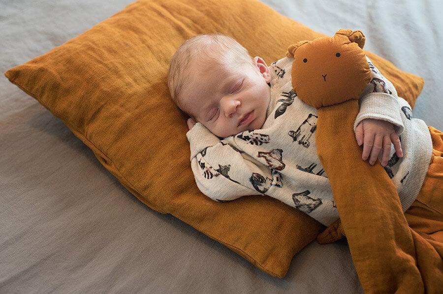 Portrait nouveau-né et son doudou sur un coussin caramel.